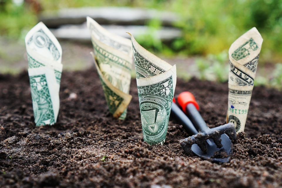 Conheça os Tipos de Fundos de Investimento